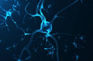 Dopamine and addiction relapse