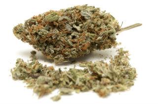Top 10 medical uses for marijuana