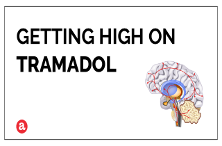Does Tramadol get you high?