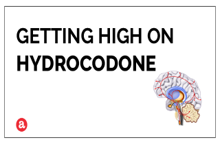 Does hydrocodone get you high?