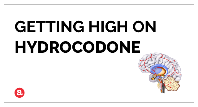 Does hydrocodone get you high?