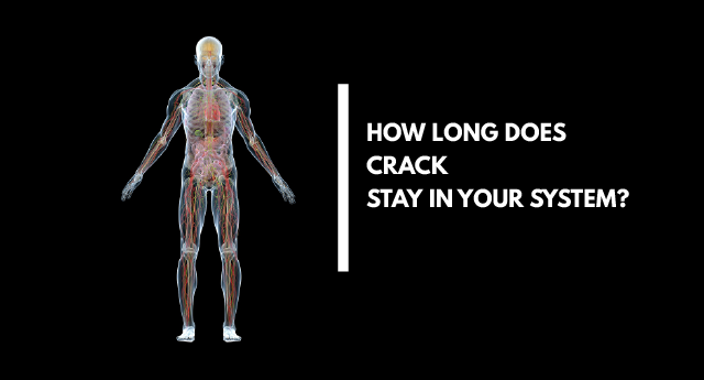How Long Does Crack Stay In Your System?