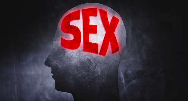 Sex addiction and the brain