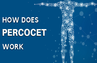 How does Percocet work?