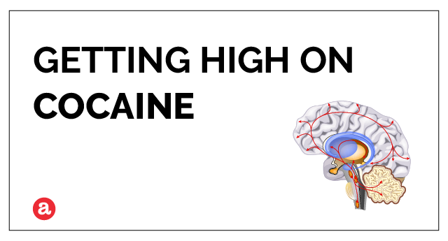 Can you get high on cocaine?