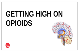 Can you get high on opioids?
