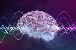How does Suboxone work in the brain?
