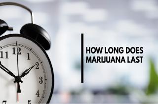 How Long Does Marijuana Last?