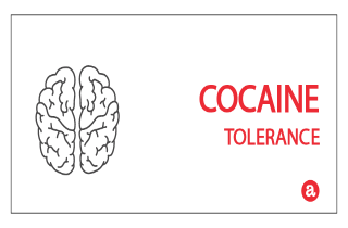 Tolerance to cocaine