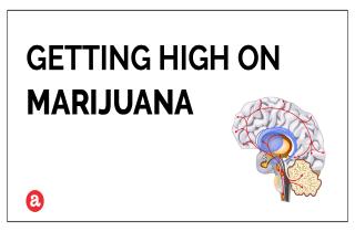 Can you get high on marijuana?