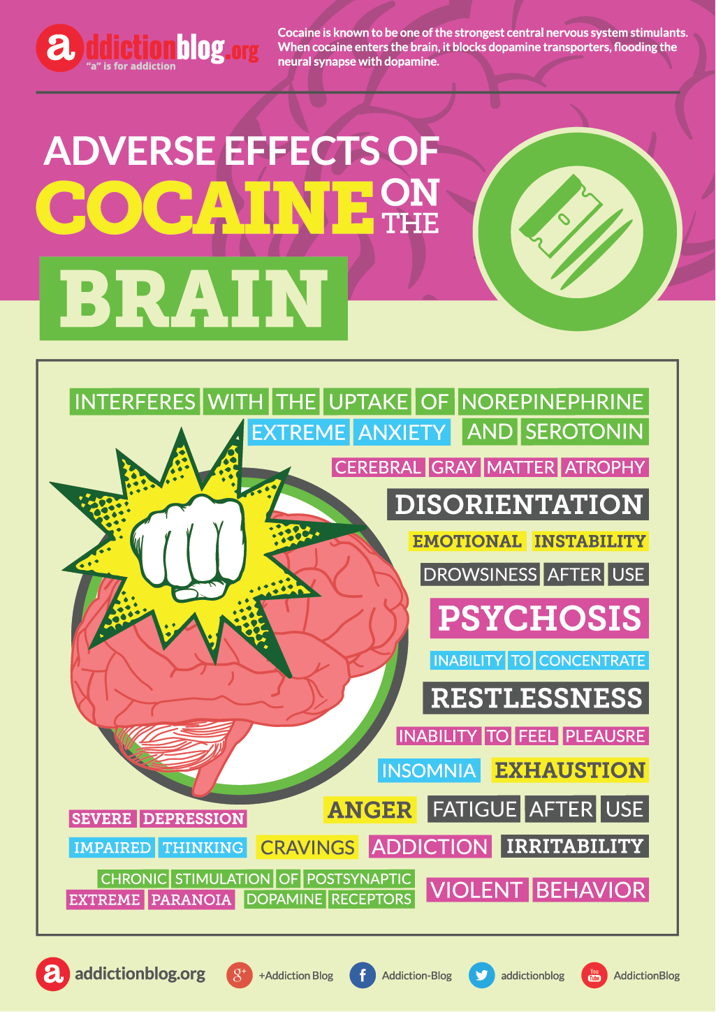 Adverse effects of cocaine on the brain (INFOGRAPHIC)