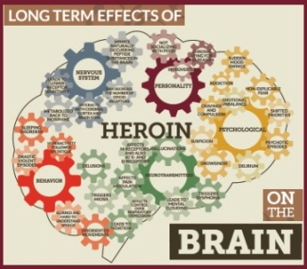Long term effects of heroin on the brain (INFOGRAPHIC)