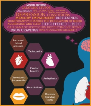 Long term effects of ecstasy on the body (INFOGRAPHIC)