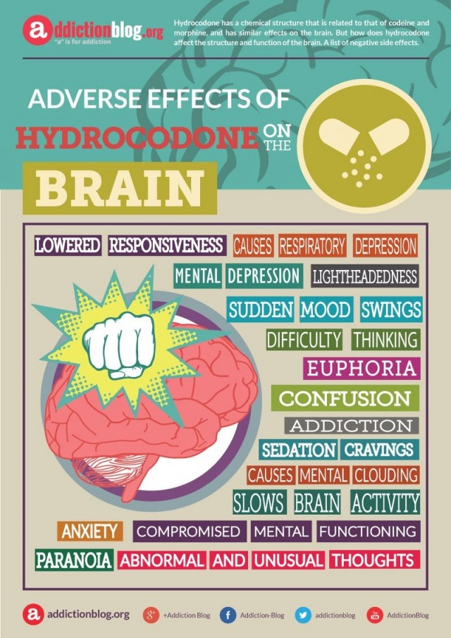 Adverse effects of hydrocodone on the brain (INFOGRAPHIC)
