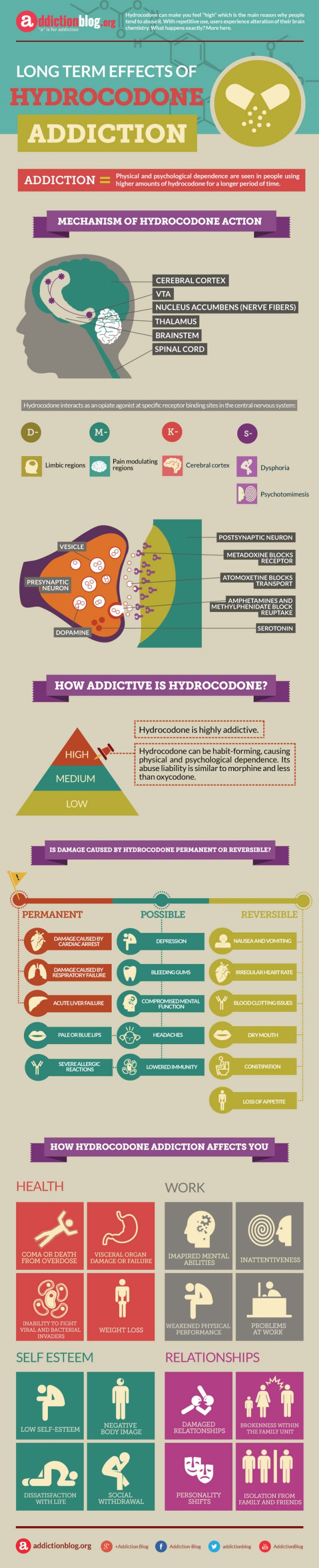 Long term effects of Hydrocodone addiction (INFOGRAPHIC)