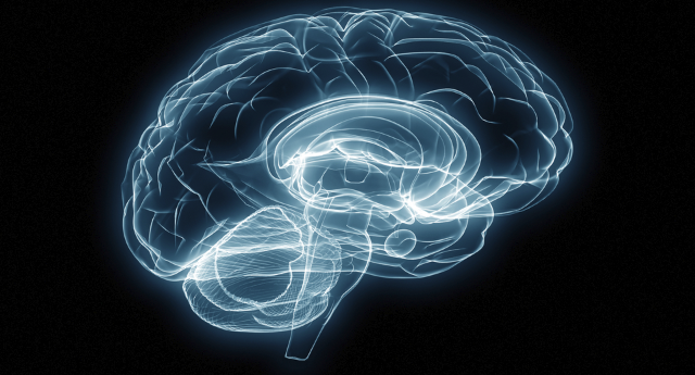 Understanding the neurobiology of addiction – An Interview with Dr. Cardwell Nuckols