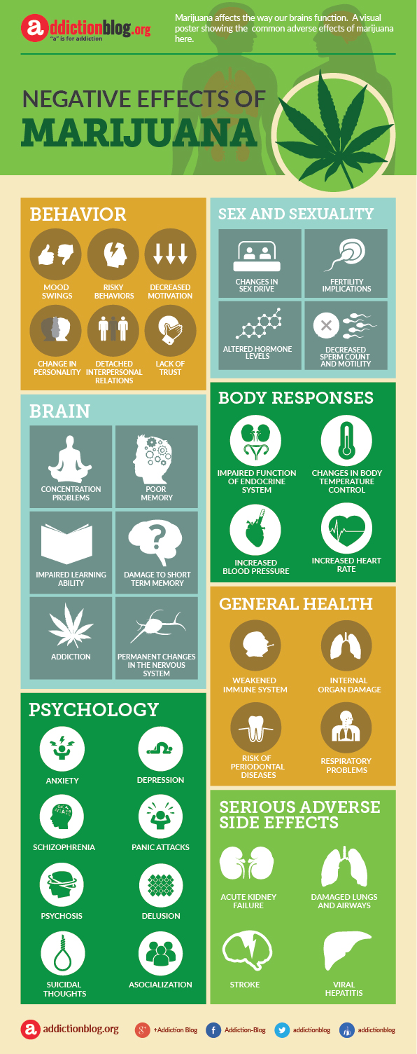 Negative, adverse effects of marijuana (INFOGRAPHIC)