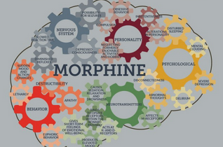 Long Term Effects of Morphine on the Brain (INFOGRAPHIC)