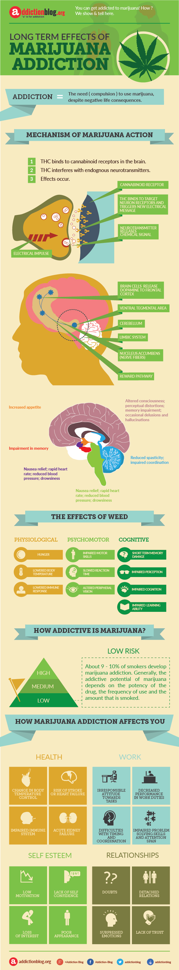 Long term effects of marijuana addiction (INFOGRAPHIC)