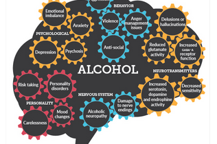 Negative brain effects from prolonged alcohol abuse  (INFOGRAPHIC)