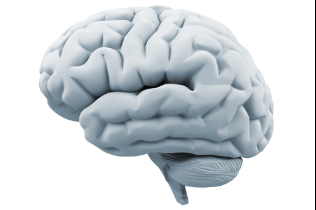 Approach addiction as what it is, a chronic brain disease