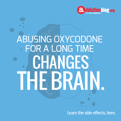 Long term effects of oxycodone on the brain (INFOGRAPHIC)
