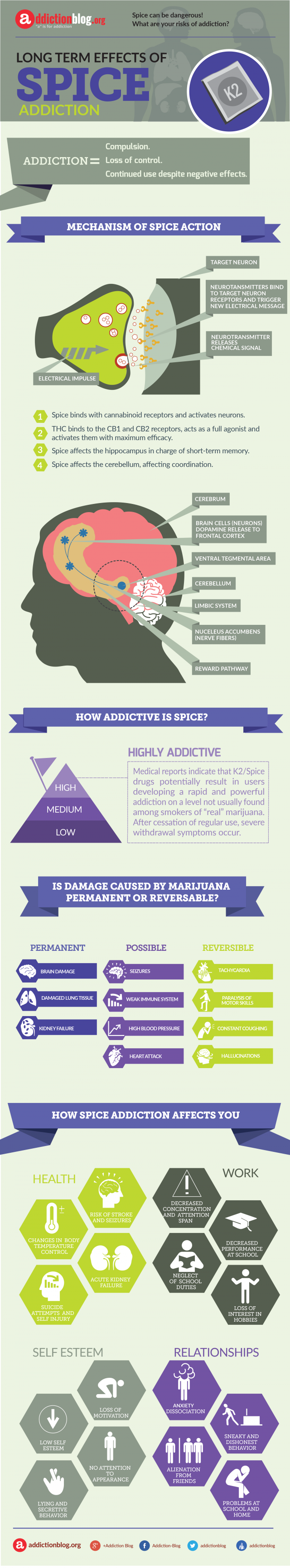 Long term consequences of Spice addiction (INFOGRAPHIC)