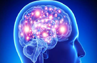 The basics of relationship dependency and the brain's dopamine reward center