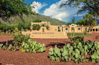 Neuroplasticity and addiction: How can integrative therapies help address past trauma? INTERVIEW with Sabino Recovery
