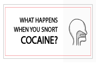 What happens when you snort cocaine?