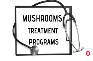 Mushroom Addiction Treatment