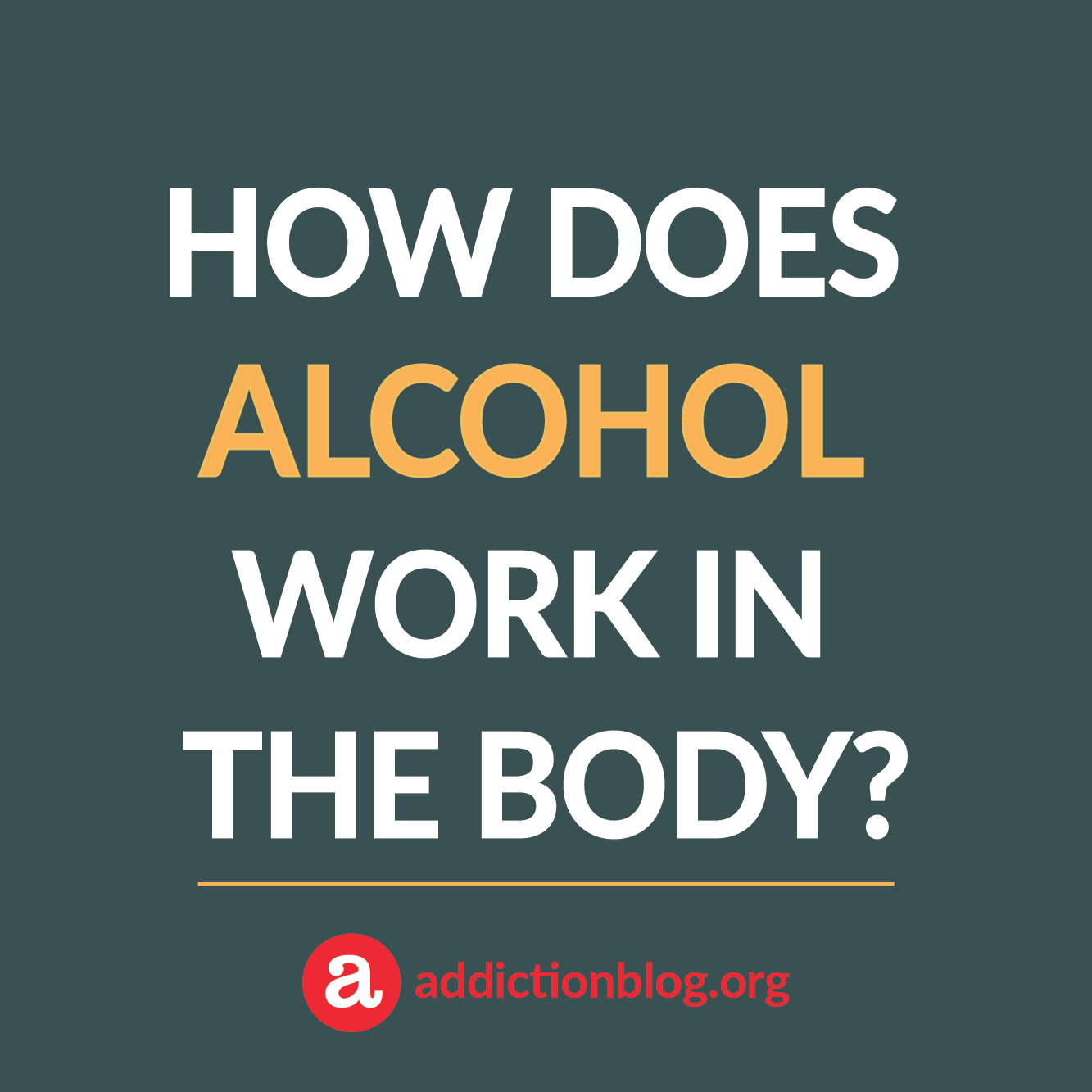Alcohol in the body: How drinking affects the body and brain (INFOGRAPHIC)
