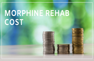 Morphine rehab cost