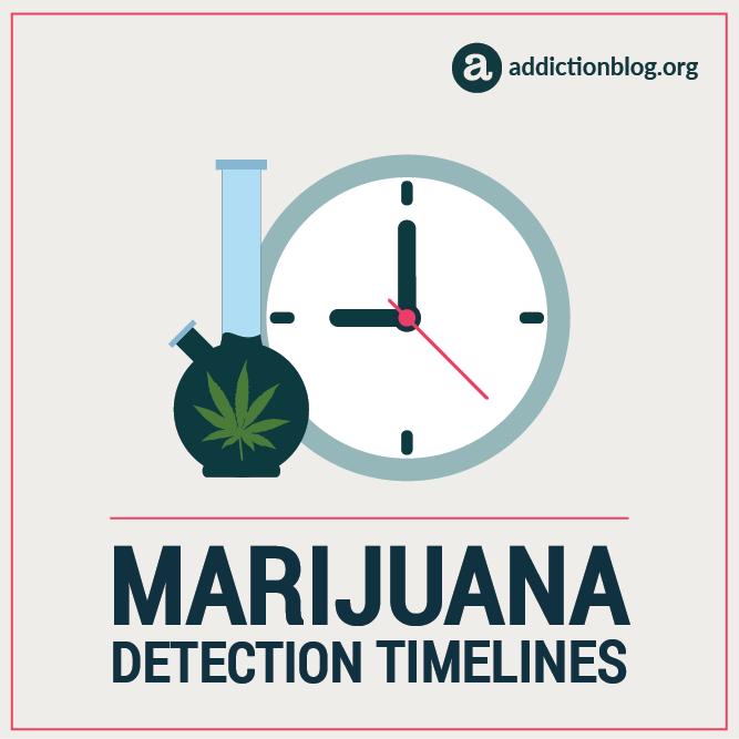 Marijuana Detection Timelines (INFOGRAPHIC)