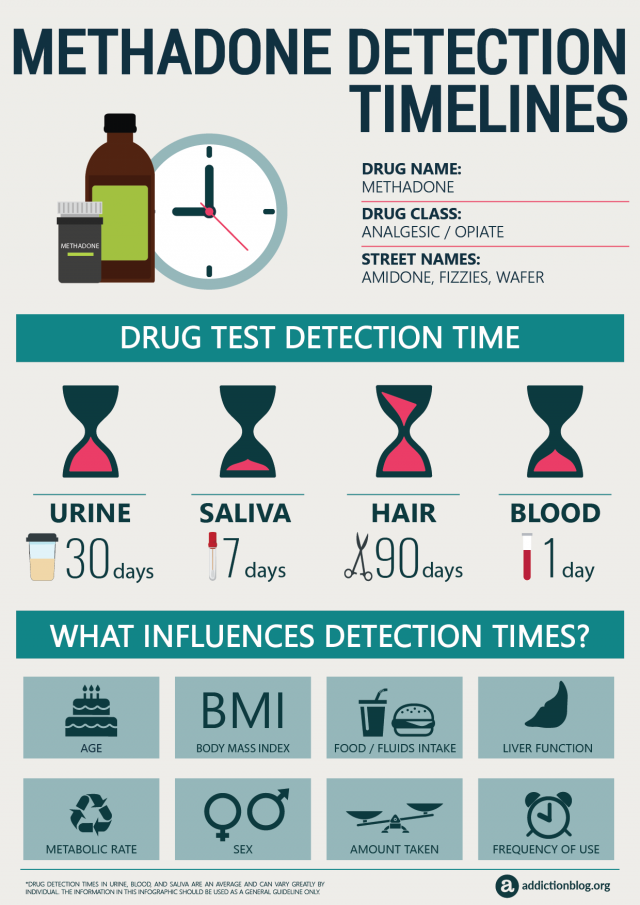 Methadone Detection Timelines (INFOGRAPHIC)