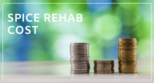 Spice rehab cost