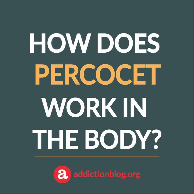 How Does Percocet Metabolize and Work in the Body? (INFORGPRAPHIC)