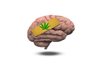 Hey Teens! Is Cannabis Bad for Your Brain or Mental Health?