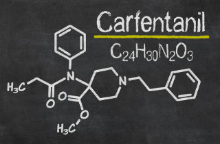 Did You Know Carfentanil Is 5000 Times Stronger Than Heroin?