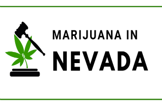 Marijuana Laws in Nevada