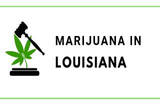 Marijuana Laws in Louisiana